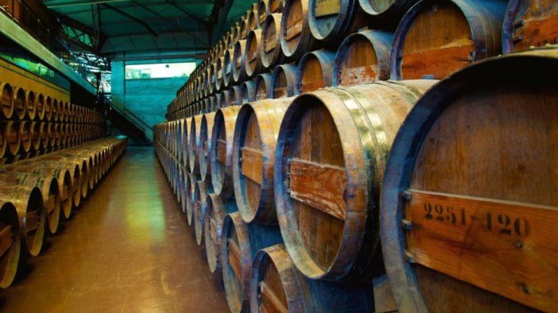 top-tour-Quinta-da-Bacalhoa-Winery-portugal