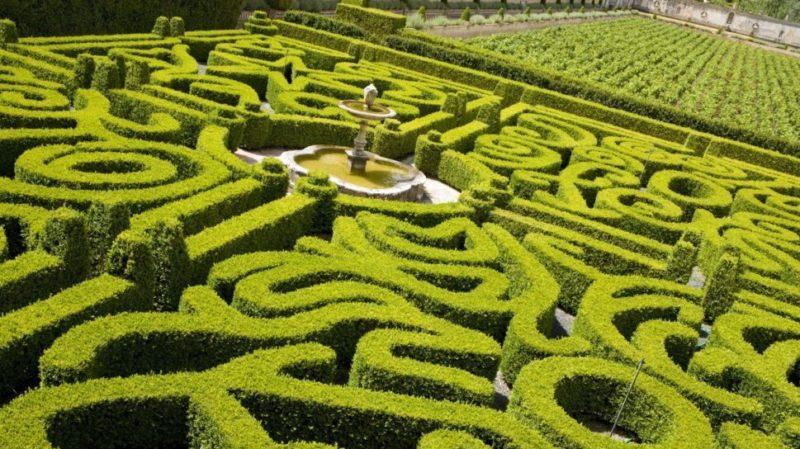 top-tour-bacalhoa-gardens-portugal