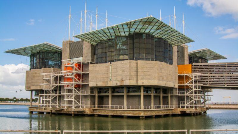 top-tour-oceanarium-lisbon-portugal